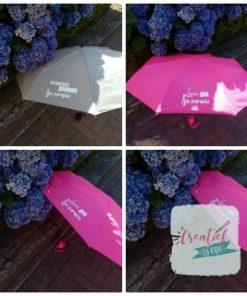 Aju paraplu juf, Aju paraplu meester