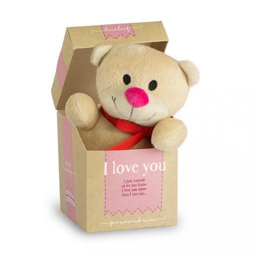 berlief beertje I love you, beertje valentijnsdag, knuffelbeertje liefde