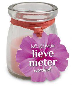 love light meter, love light peettante